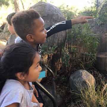 zoo-field-trip-cubberley-elementary