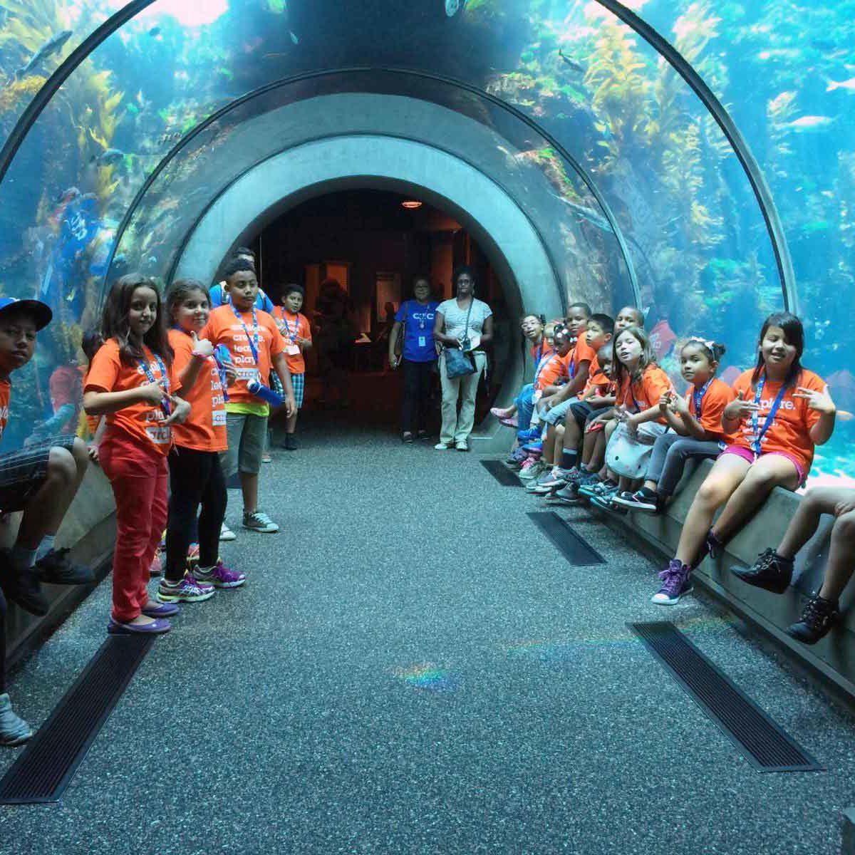 1407-HP-camp-aquarium-field-trip